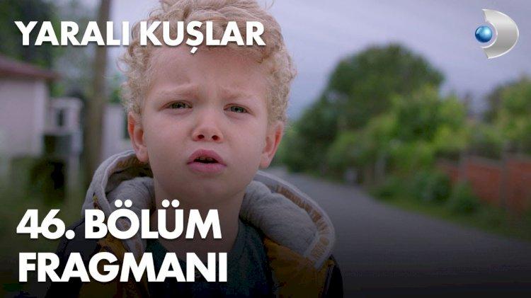 Turska Serija – Yaralı Kuşlar | Ranjene ptice 46