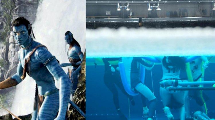 """Počinje snimanje nastavka filma """"Avatar"""" i serije """"Gospodar prstenova"""""""