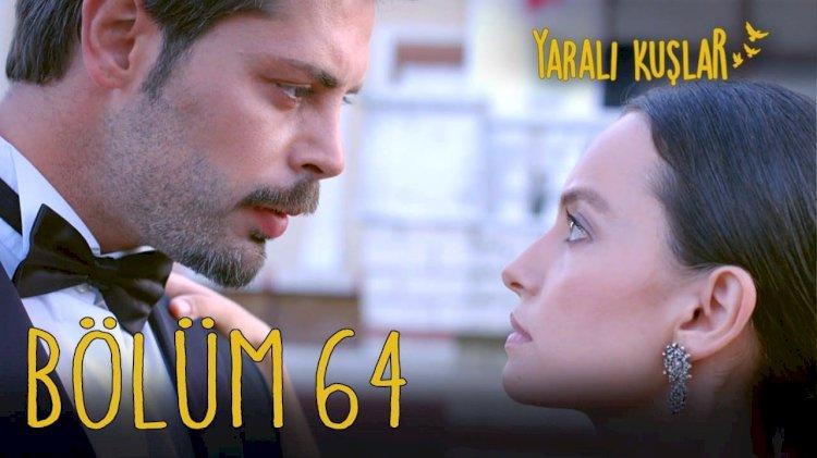 Yaralı Kuşlar   Ranjene ptice epizoda 64