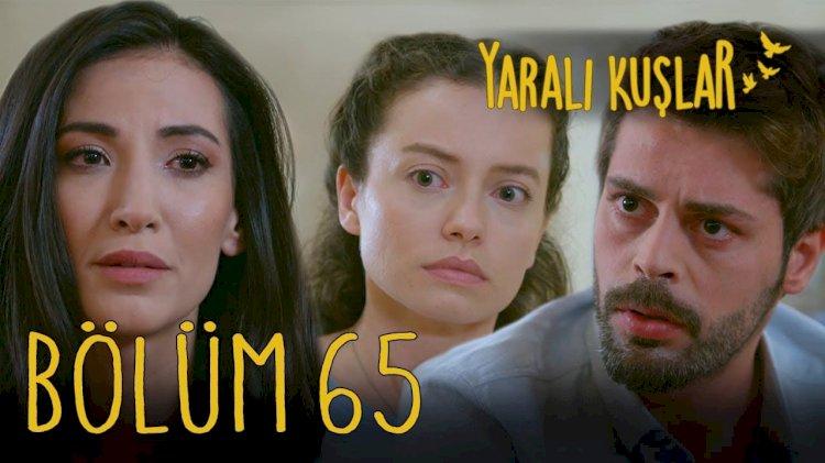 Yaralı Kuşlar   Ranjene ptice epizoda 65