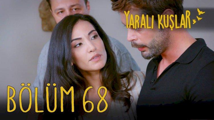 Yaralı Kuşlar | Ranjene ptice epizoda 68