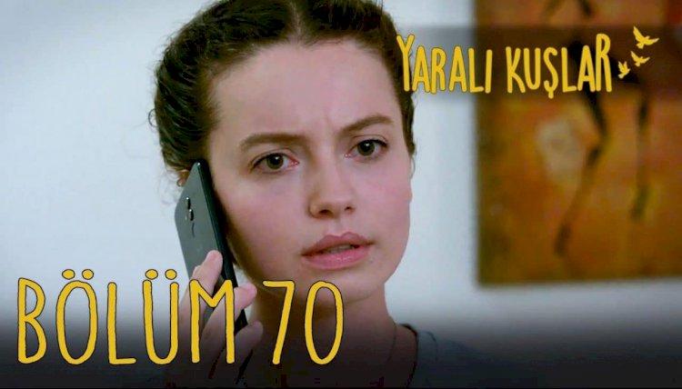 Yaralı Kuşlar | Ranjene ptice epizoda 70