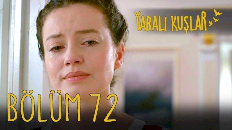 Yaralı Kuşlar   Ranjene ptice epizoda 72