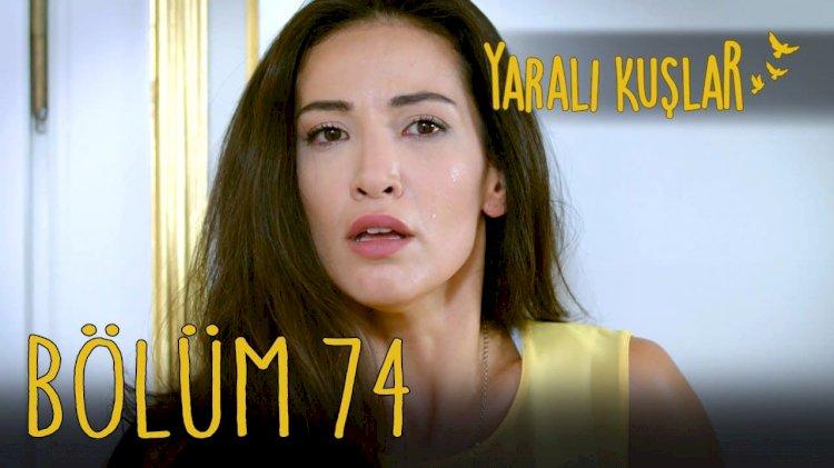 Yaralı Kuşlar   Ranjene ptice epizoda 74