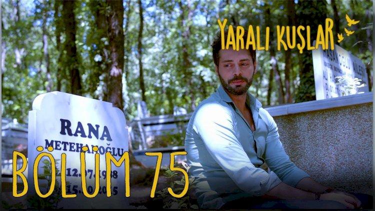 Yaralı Kuşlar   Ranjene ptice epizoda 75