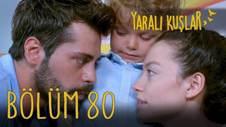 Yarali Kuslar   Ranjene ptice epizoda 80