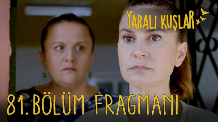 Yarali Kuslar | Ranjene ptice epizoda 81