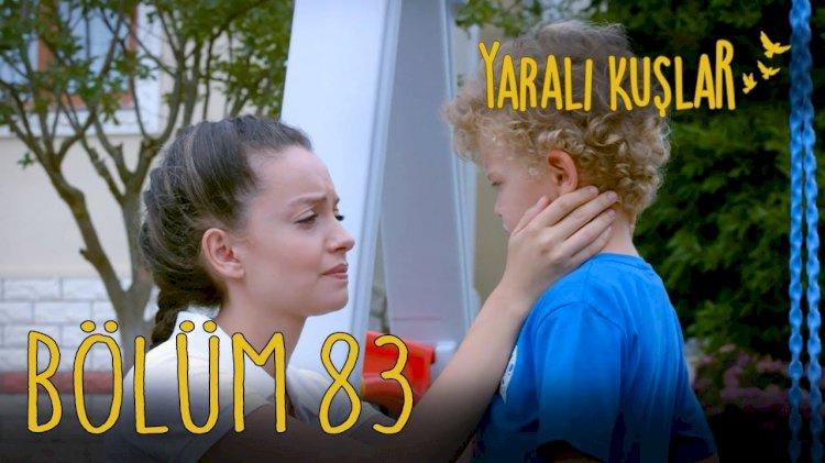 Yarali Kuslar | Ranjene ptice epizoda 83