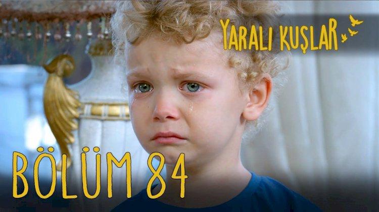 Yarali Kuslar | Ranjene ptice epizoda 84