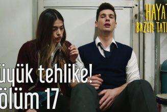 Turska serija – Život je ponekad sladak epizoda 17