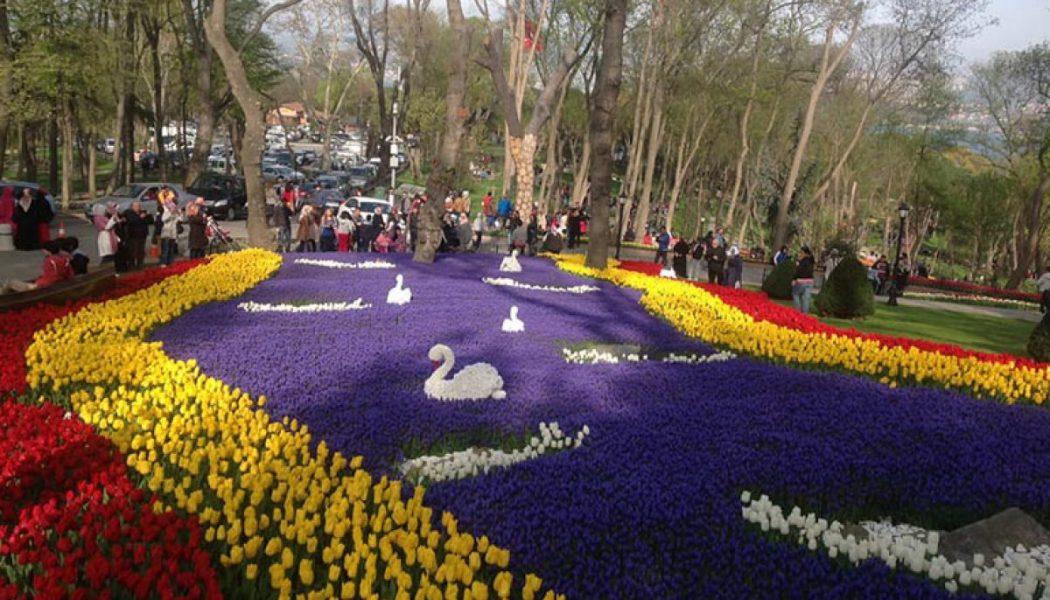 Festival lala – Turske destinacije